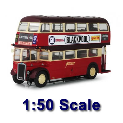 1:50 Scale Model Buses